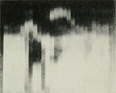 """Image from page 161 of """"Bell telephone magazine"""" (1922)"""