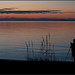 My Son Capturing an Image of Parksville Bay