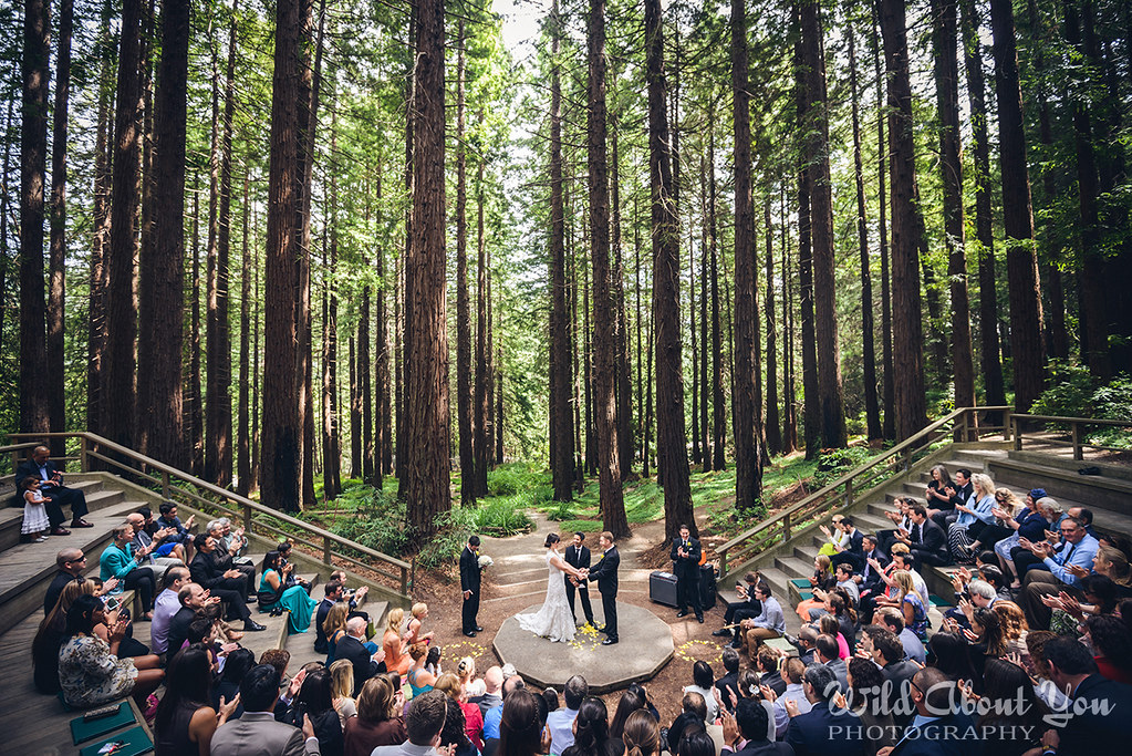 Outdoor Wedding Ceremony Mountain Laurel Farm Six Hearts: Katie & Sayre's Berkeley Redwoods Wedding