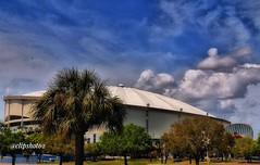 Dome   C70D.   Tropicana Stadium in St Pete, home of the Rays.