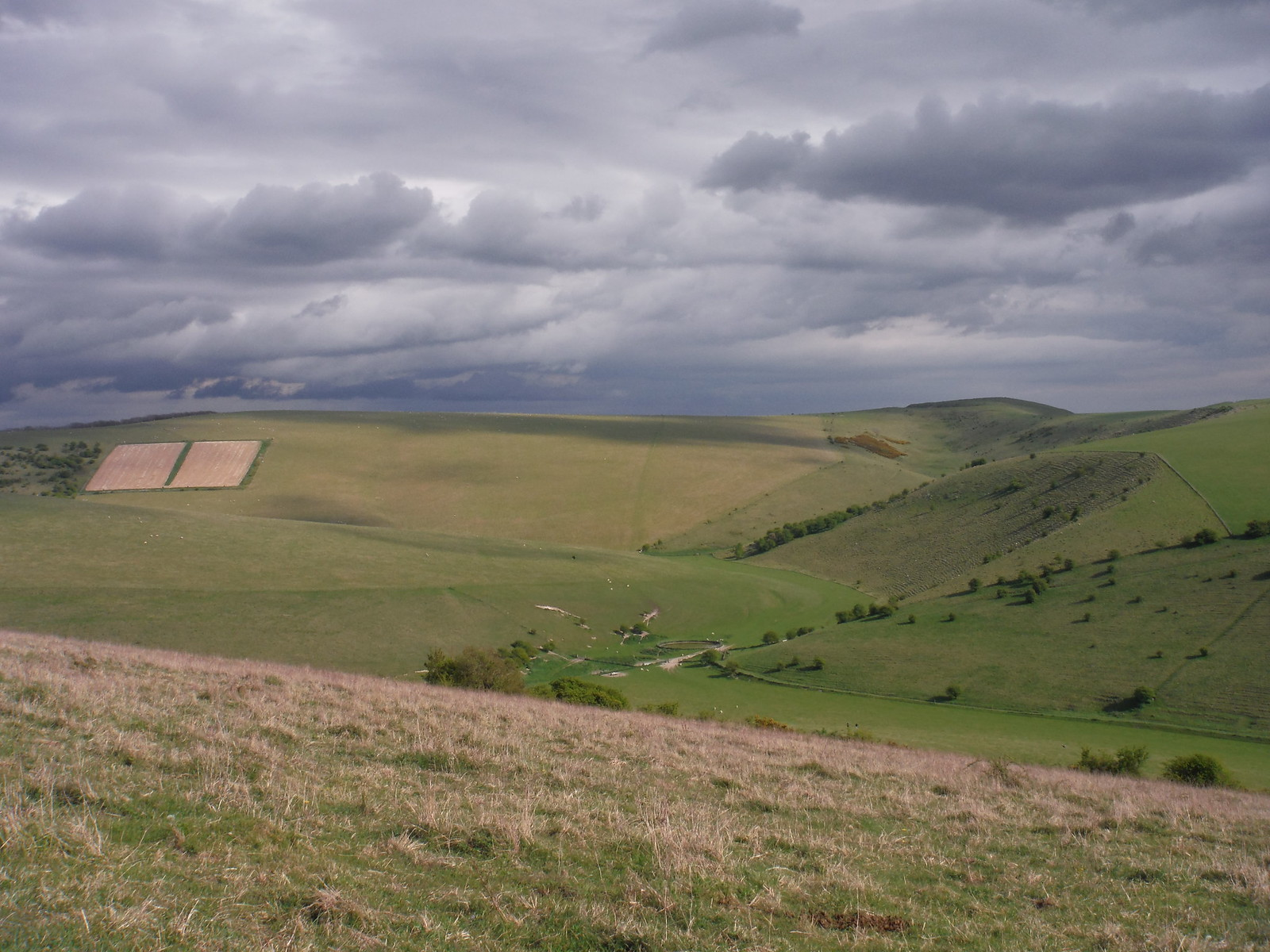 Saxon Down and Caburn Hillfort SWC Walk 272 Uckfield to Lewes