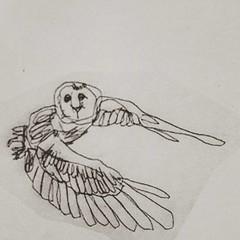 #owl #flying #scottbradleyferguson #drawing #art #oldart #lineart
