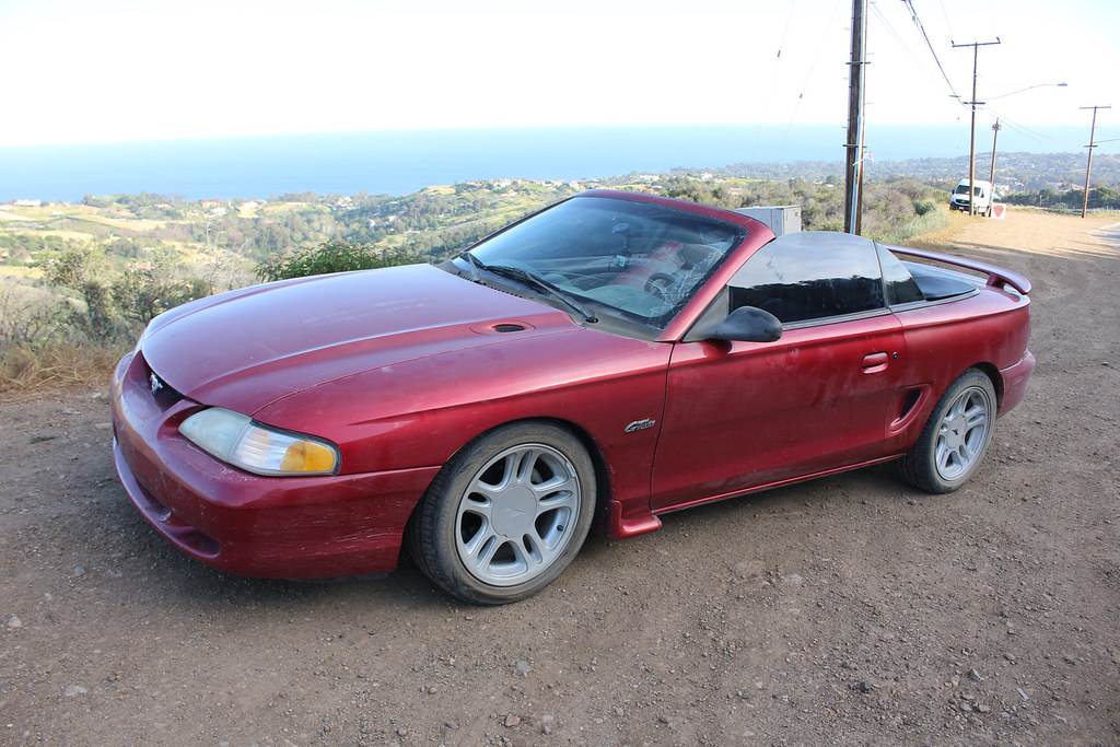 Need some advice (Mustang/Corvette content)| Grassroots