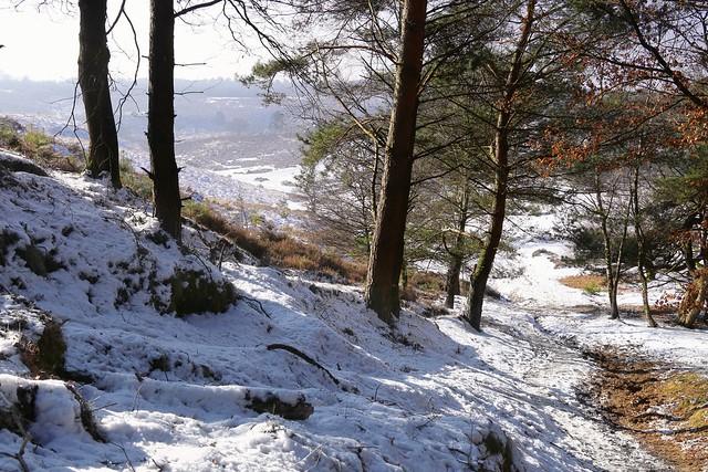 Strolling down the snowy hillside of the Posbank