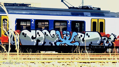 Painted Train