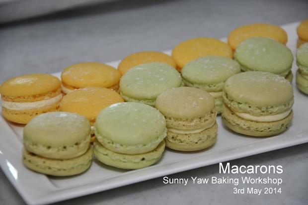 Macaron Class Sunny Yaw