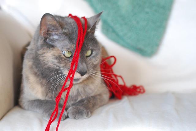 Knitty Kitty Bag