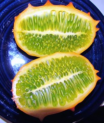 Seeds in a Kiwano 3