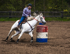 rodeo(0.0), western riding(0.0), team penning(0.0), jockey(0.0), animal sports(1.0), equestrianism(1.0), equestrian sport(1.0), sports(1.0), horse(1.0), barrel racing(1.0), traditional sport(1.0),