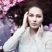 Cherry Blossom by Eva van Oosten