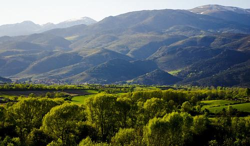 panorama verde green nature forest landscape view natura paisaje catalonia bosque catalunya camps pedra cataluña verd cerdanya bosc paisatge catalogna bellver katalonien catalogne baixacerdanya каталония 加泰罗尼亚