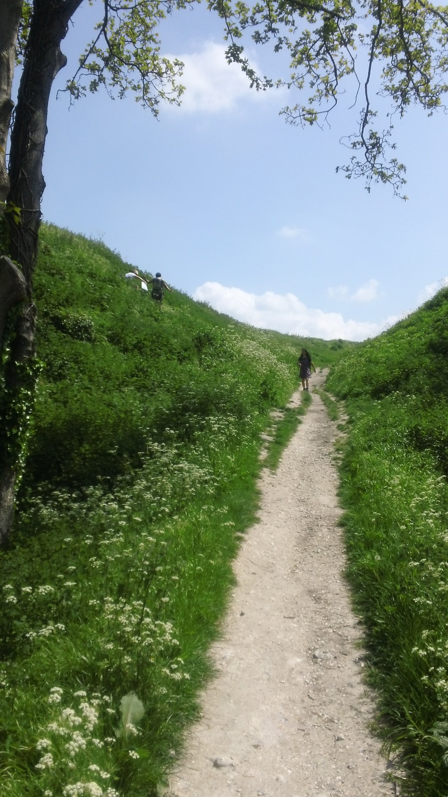 Choices: descending from Old Sarum