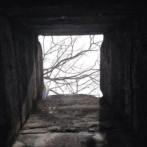 Pandangan dari bawah bunker #sabang #bunker #aceh #acehtrip #indonesia