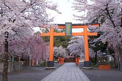 shrine057