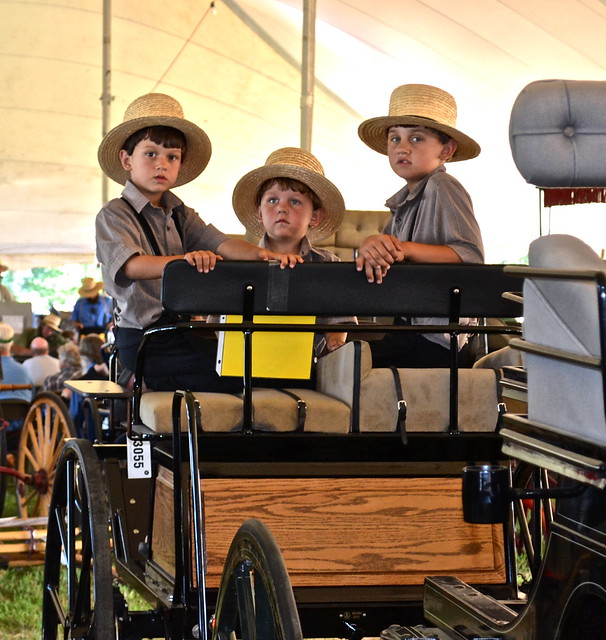 amish boys - Amish Auction Lancaster County PA