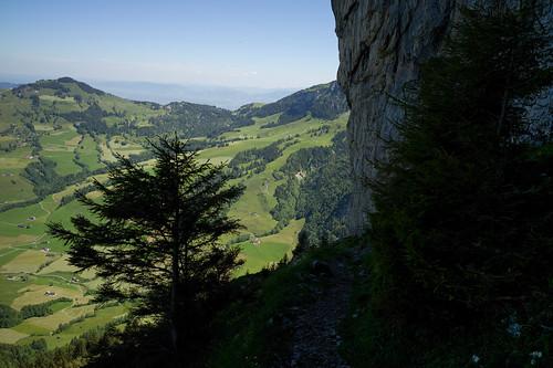 landscape schweiz switzerland europe suisse hiking 28mm trail appenzell wanderung wanderweg alpstein 2014 svizra svizera elmaritm appenzellinnerrhoden 140607 ©toniv leicam9 zahmegocht l1016700