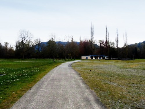 Walk in the Park | Anita