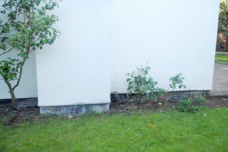 Side of the house -before