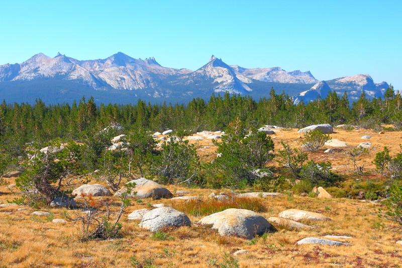 IMG_4969 Young Lakes Trail, Yosemite National Park
