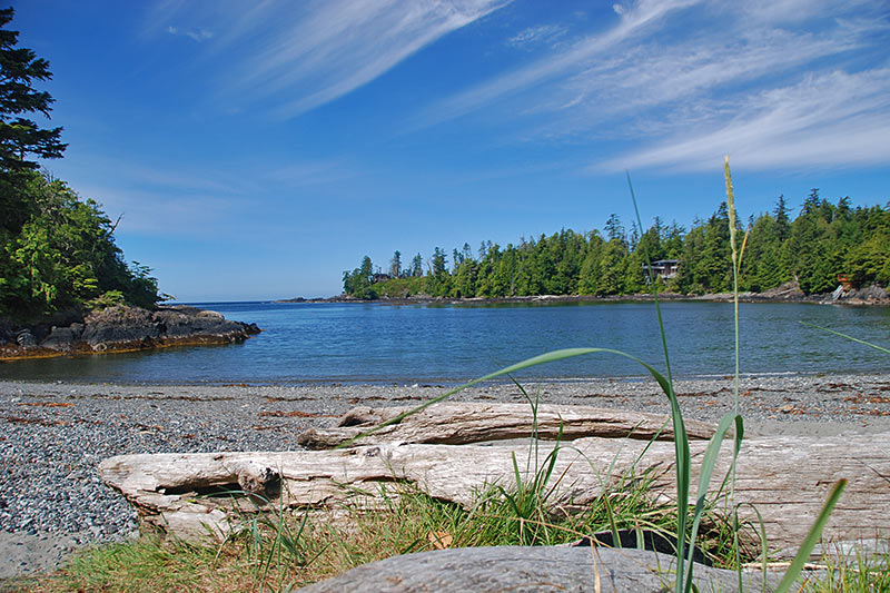 Beaches Vancouver Island News Events Travel