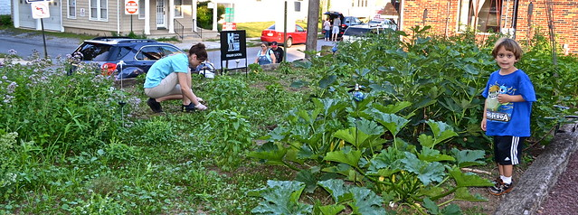 Organic Garden - Fenicci's Restaurant Hershey PA