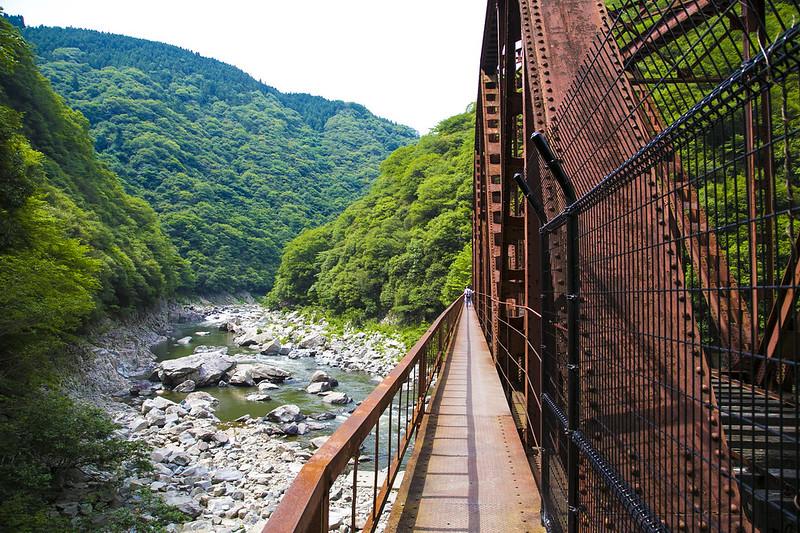 武庫川渓谷廃線ハイキング(生瀬ー武田尾)572