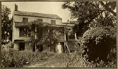 """Image from page 480 of """"American homes and gardens"""" (1905)"""