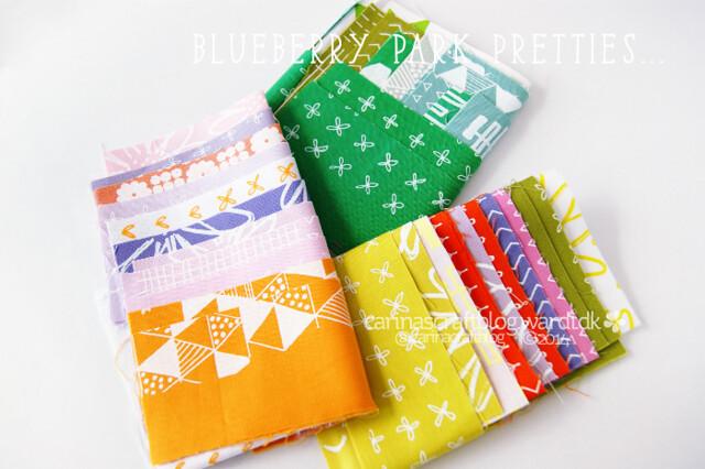 Blueberry Park Fabric