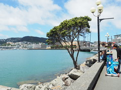 Christmas Piano song, Wellington harbour NZ