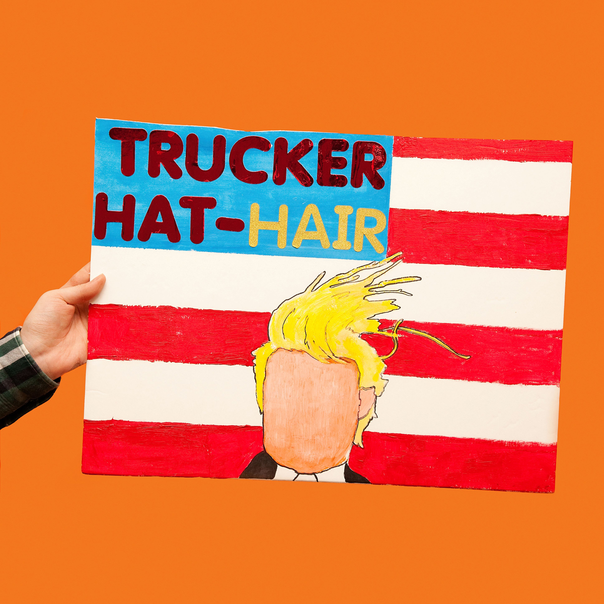 45 Protest Signs_Brandon and Olivia Locher_9_Trucker HatHair