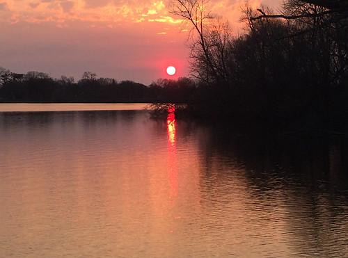 trees spring dawn landscape minnesota sky nature water reflections outdoors sunrise lake morning lakewinona winonaminnesota