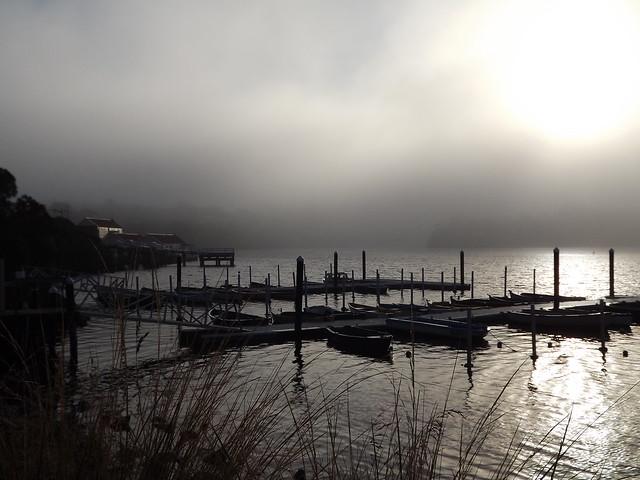 Fog on the Hopkins, Fujifilm FinePix S4000