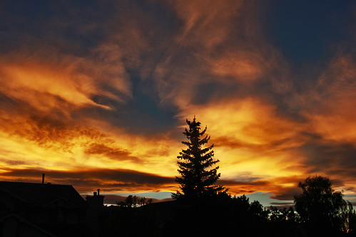 Intense Chinook Skies