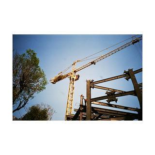 steel  branches /crane/ wood structure