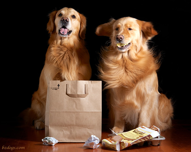 Recycling Retrievers