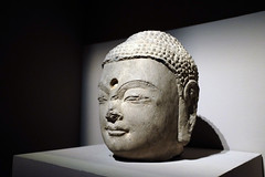 Head of Buddha  (Secrets of the Fallen Pagoda: Treasures from Famen Temple and the Tang Court Asian Civilisations Museum)