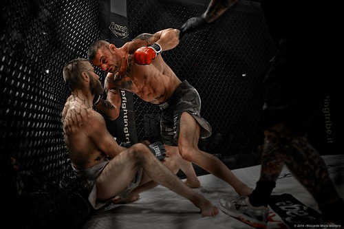 Fighters 8 of 10