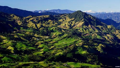 naturaleza verde campo antioquia sonsón