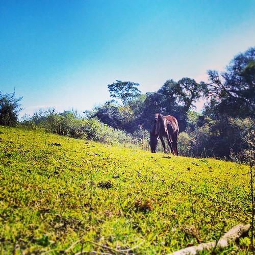 #Paisajes de #Tucuman , Hoy Cerro #SanJavier ..... @igers_noa