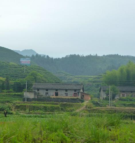 Jiangxi-Yushan-Sanqing Shan-bus (49)