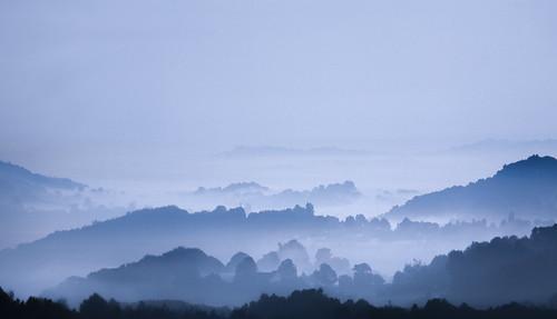 uk morning trees sky mist fog wales landscape dawn interestingness britain cymru cardiff hills explore caerdydd gwent monmouthshire cwmbran bassaleg torfaen explored penylan bettws wentloog stevegarrington