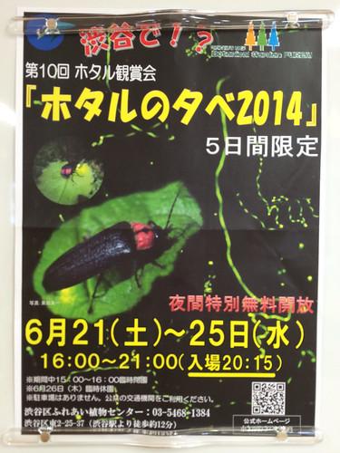 ホタルの夕べ2014 ポスター