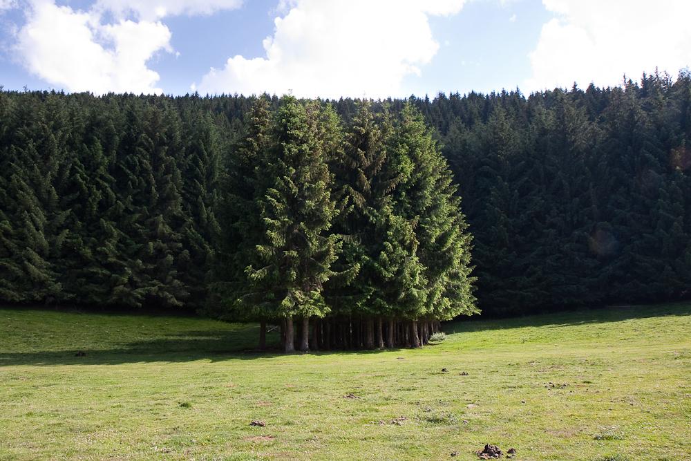 Vallée de Campan - Symétrie