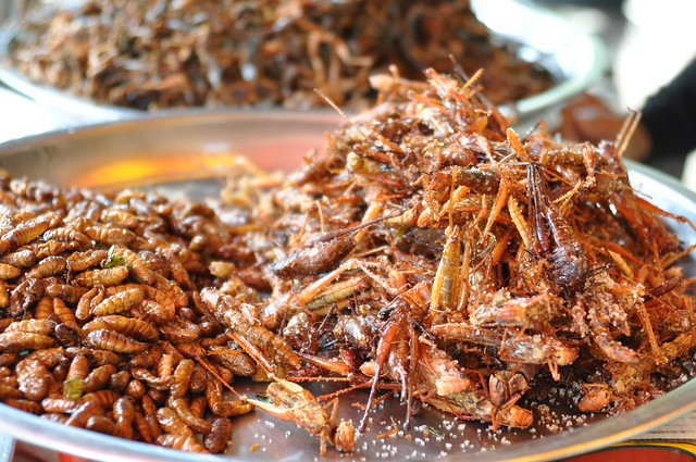 Fried bamboo worm (L) and crickets (R)