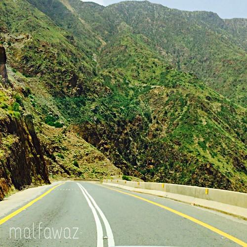 travel green nature