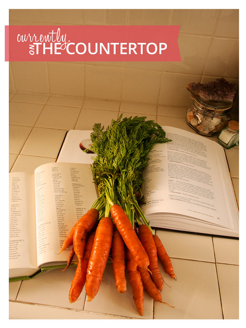 Whipping Up a Carrot Based Recipe using The Flavor Bible and The Flavor Thesaurus