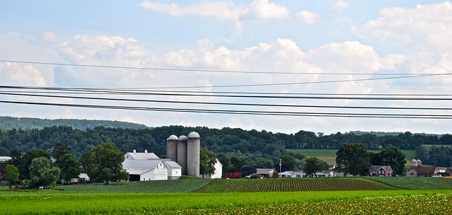 Amish country side - Strasburg Railroad PA