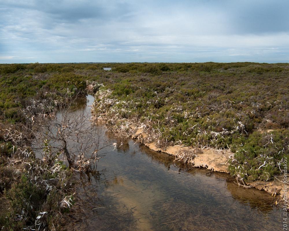 Wallaroo South Australia-4