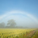 Double Fogbow by lichtmaedel