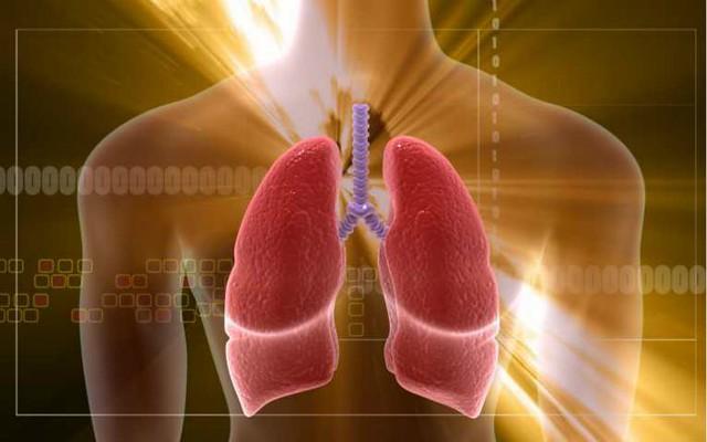 Cómo afecta el cambio climático a tu salud 14527883284_b026a2eca6_z